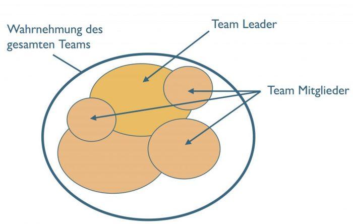 Situationsbewusstsein im Team und von einzelnen Team Mitgliedern (modifiziert nach Endsley).